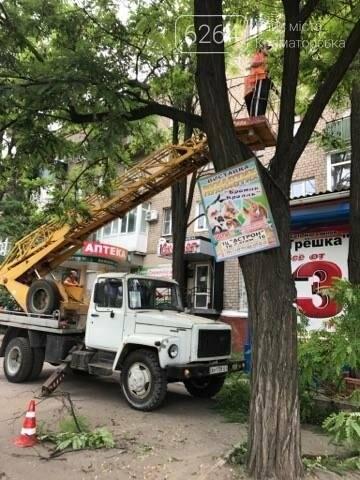 Краматорские коммунальщики наконец-то занялись аварийными деревьями  , фото-1