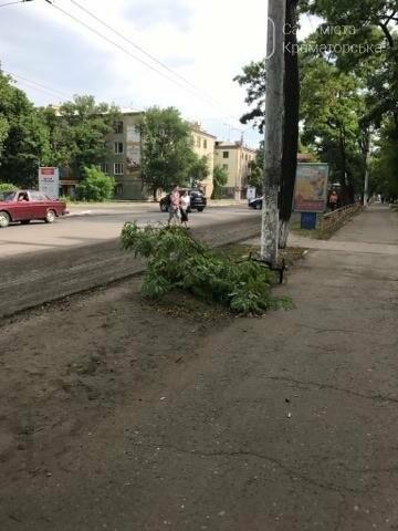 Краматорские коммунальщики наконец-то занялись аварийными деревьями  , фото-4