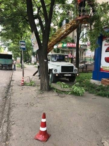 Краматорские коммунальщики наконец-то занялись аварийными деревьями  , фото-5