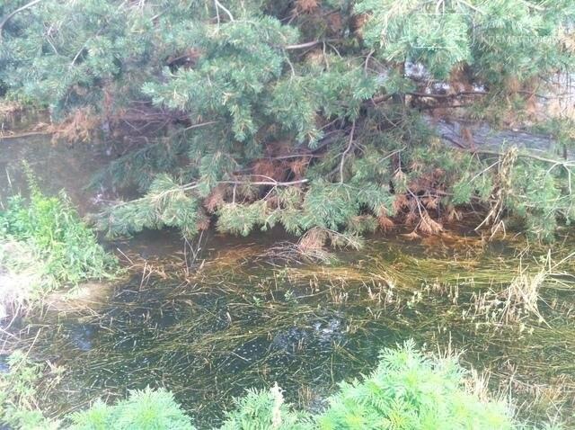 Прокуратура выясняет обстоятельства загрязнения голубых озер, фото-2