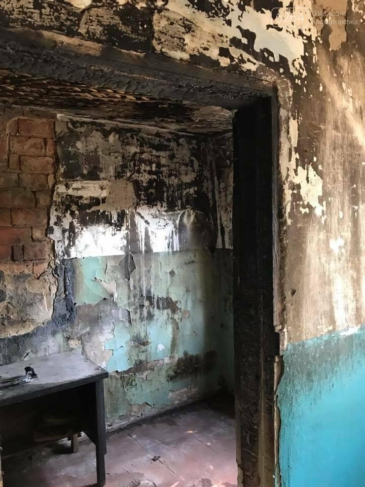 В Краматорске на пожаре погибли 11 собак, фото-1