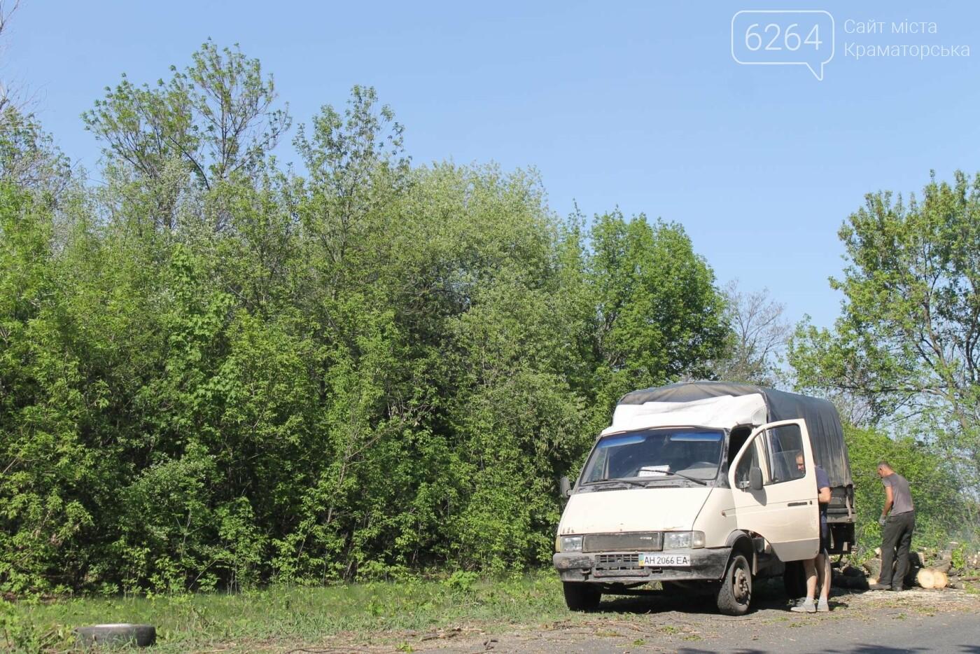 Опиловка близ Краматорска: непроглядный дым, вывоз отборного леса и скрытные «лесорубы», не знающие для кого и чего работают, фото-7