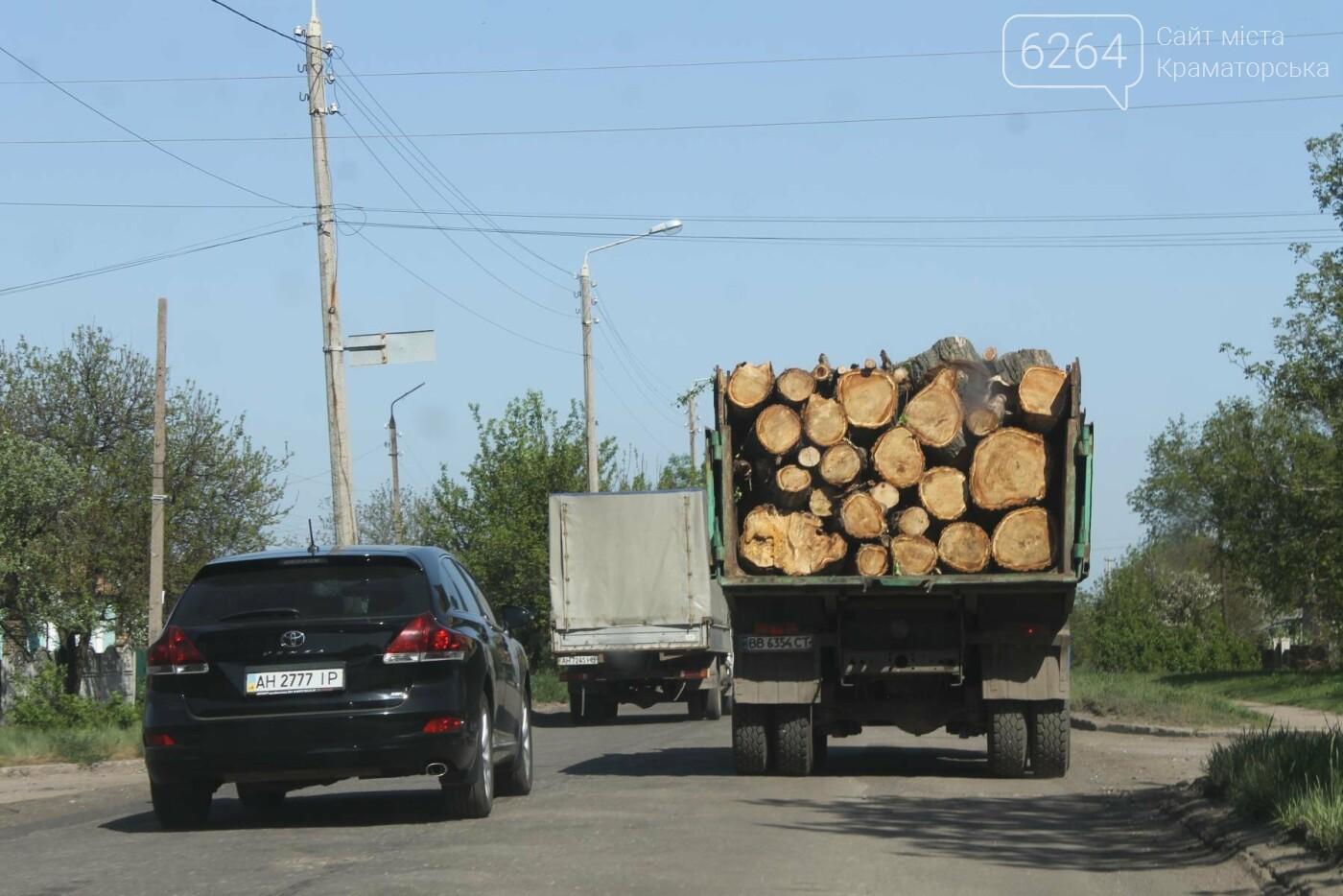 Опиловка близ Краматорска: непроглядный дым, вывоз отборного леса и скрытные «лесорубы», не знающие для кого и чего работают, фото-10