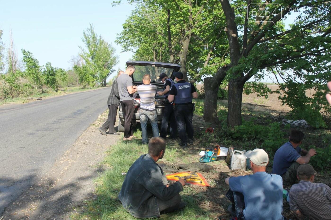 Опиловка близ Краматорска: непроглядный дым, вывоз отборного леса и скрытные «лесорубы», не знающие для кого и чего работают, фото-8