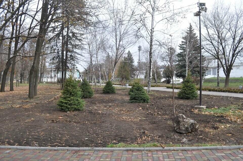 У краматорському Парку Пушкіна проводиться озеленення, фото-3