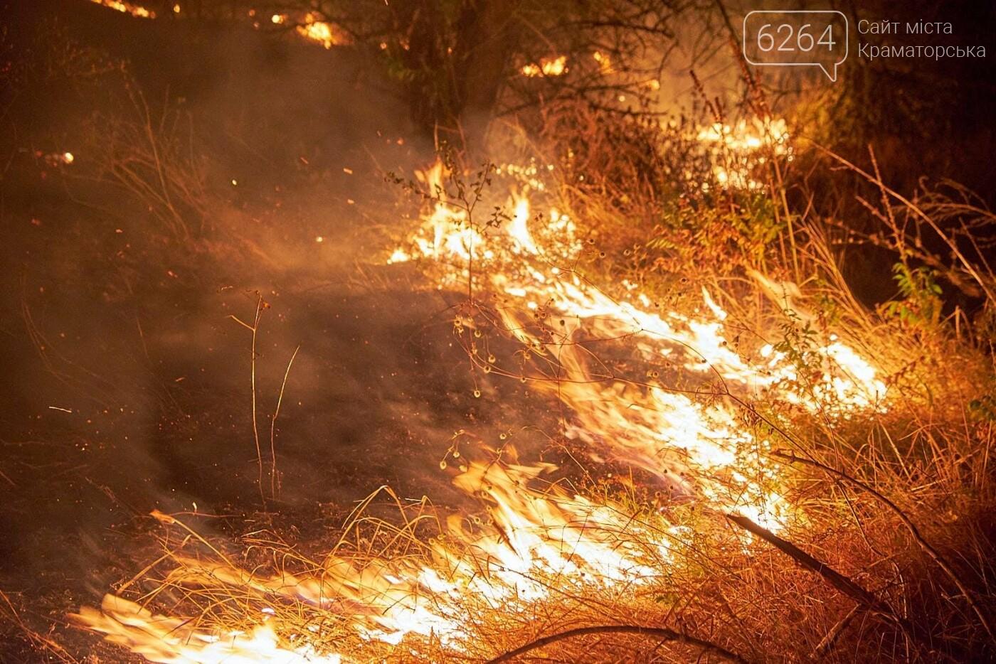 Масштабный лесной пожар в Краматорске – спасатели подозревают поджог (фото), фото-3