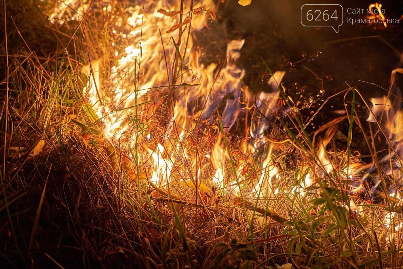 Масштабный лесной пожар в Краматорске – спасатели подозревают поджог (фото), фото-4