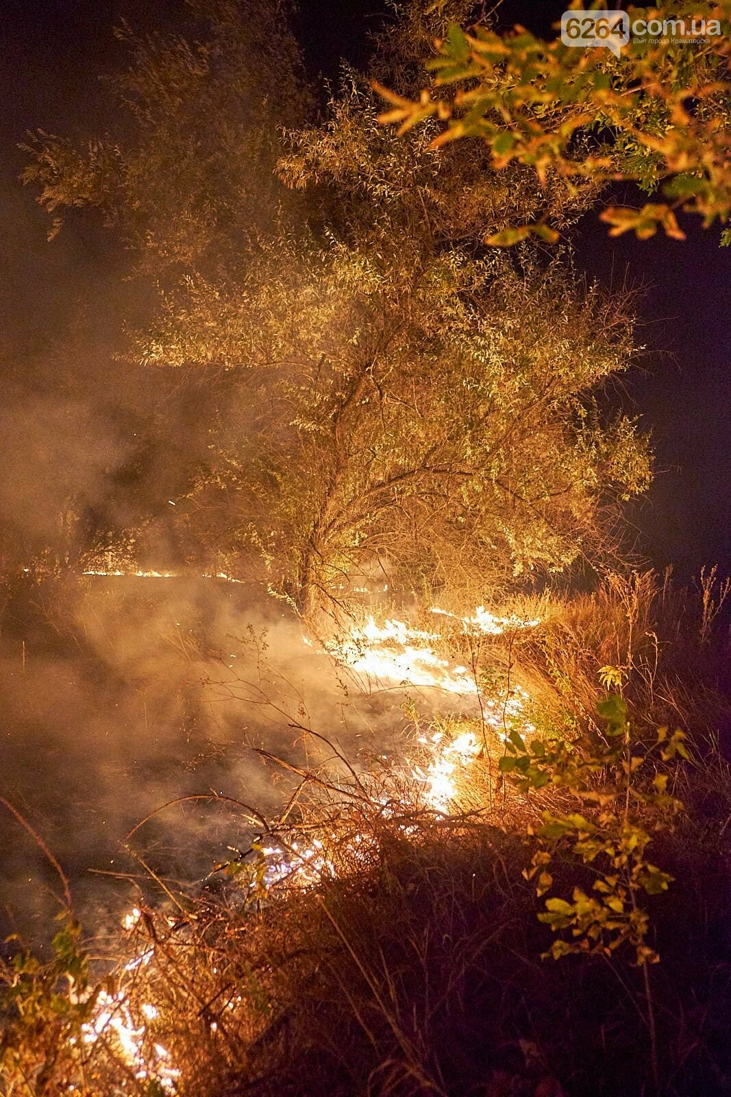 Масштабный лесной пожар в Краматорске – спасатели подозревают поджог (фото), фото-5