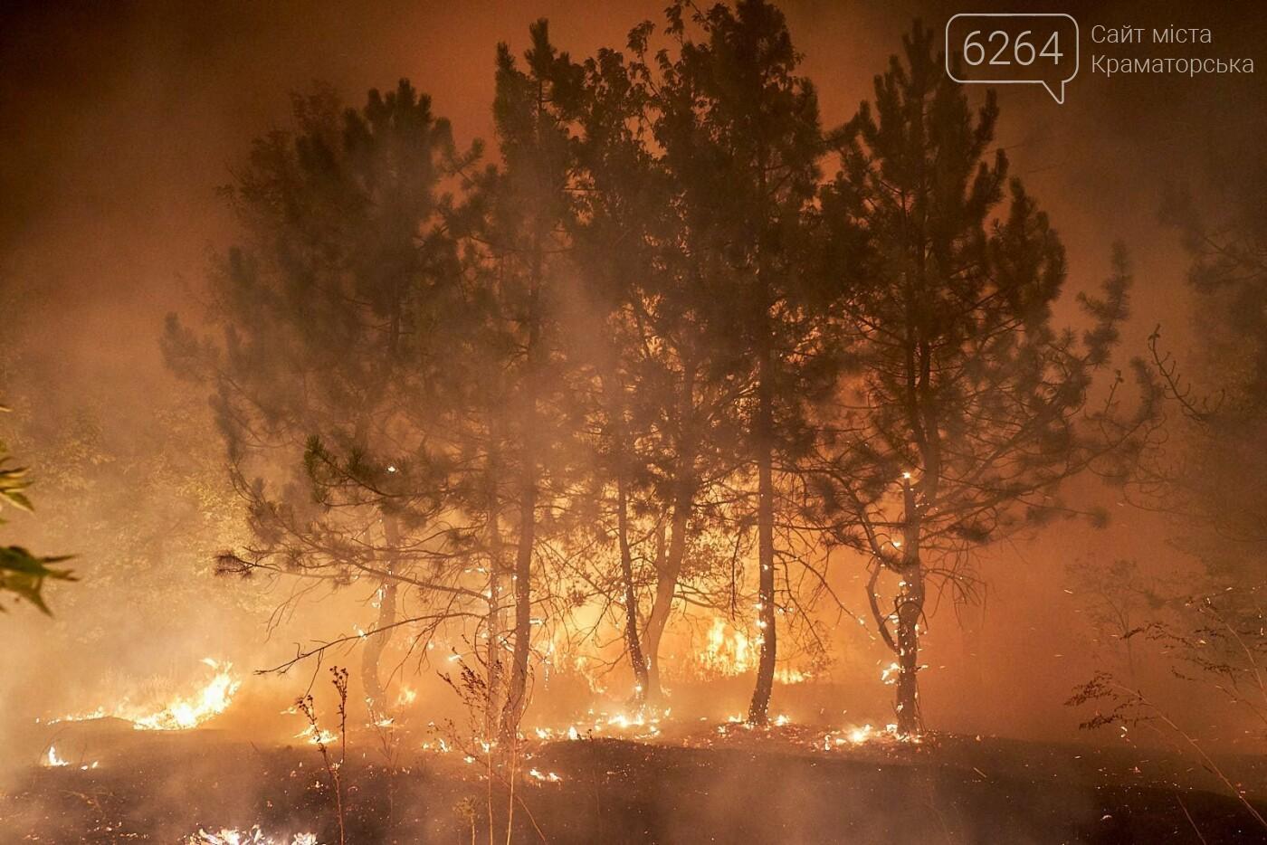 Масштабный лесной пожар в Краматорске – спасатели подозревают поджог (фото), фото-6