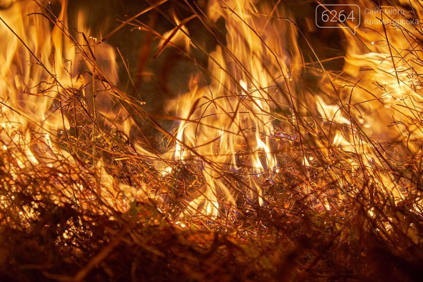Масштабный лесной пожар в Краматорске – спасатели подозревают поджог (фото), фото-7