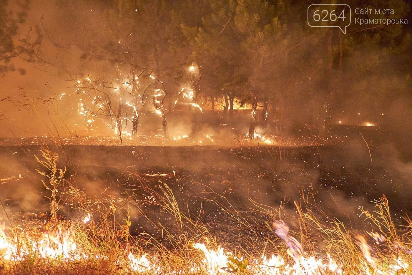Масштабный лесной пожар в Краматорске – спасатели подозревают поджог (фото), фото-8
