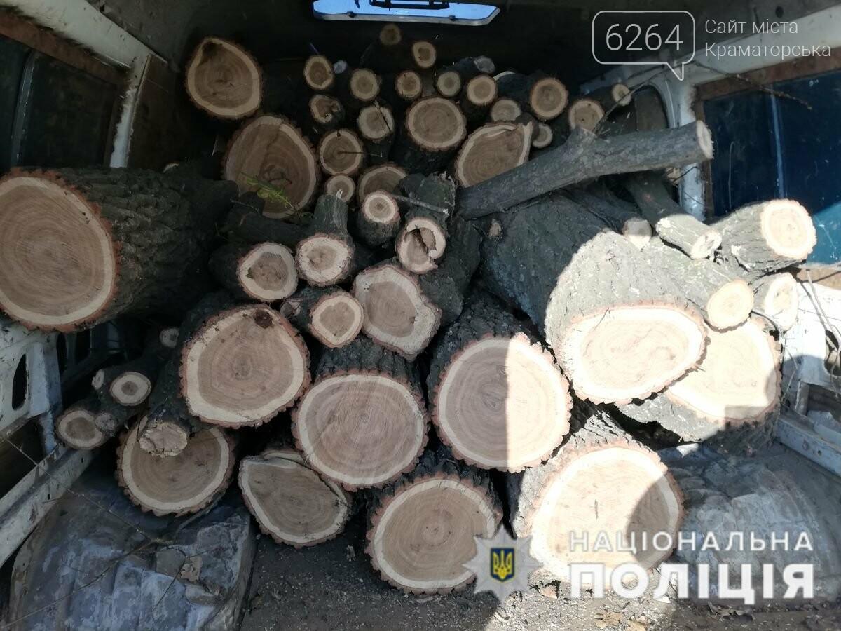 За фактом незаконної порубки лісу поліція Краматорська відкрила кримінальне провадження, фото-1