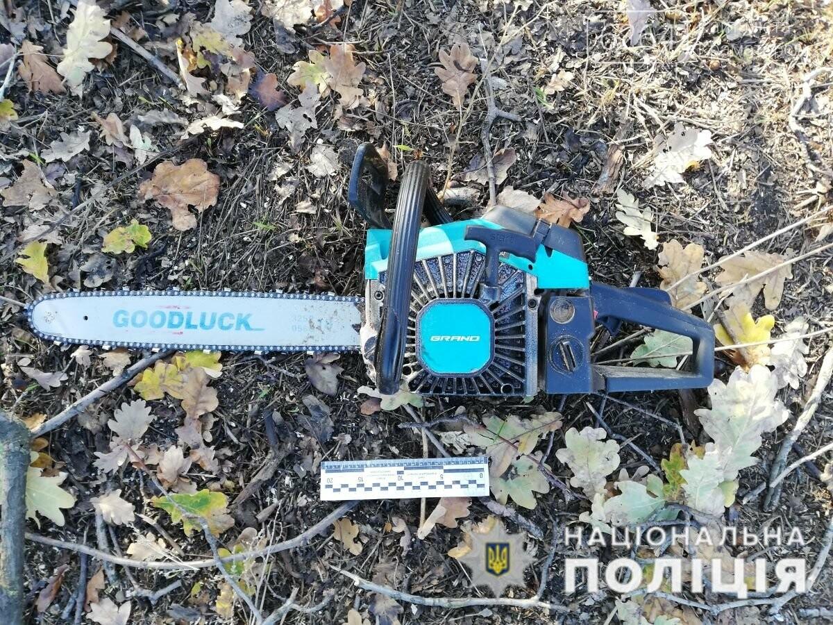 За фактом незаконної порубки лісу поліція Краматорська відкрила кримінальне провадження, фото-2
