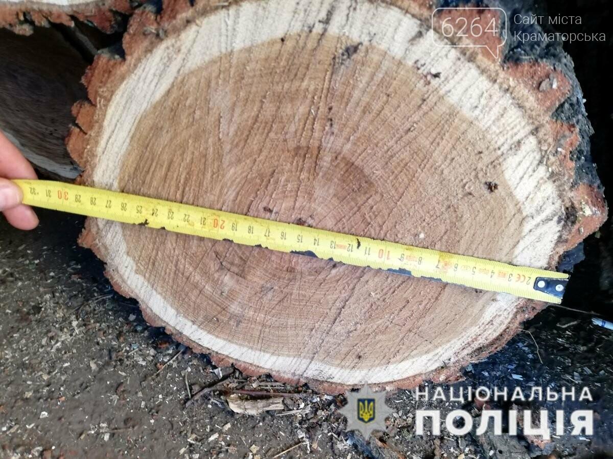 За фактом незаконної порубки лісу поліція Краматорська відкрила кримінальне провадження, фото-3