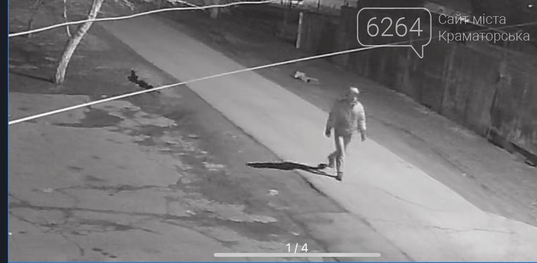 Вдарив по голові та душив мотузкою: у Краматорську поліція розшукує злочинця, який скоїв розбійний напад на жінку, фото-1