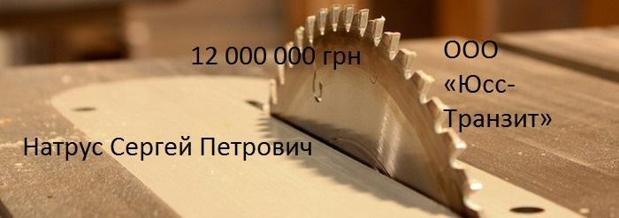 Как  в Краматорске «распилили» 12 млн гривен на ремонте парка?    , фото-1