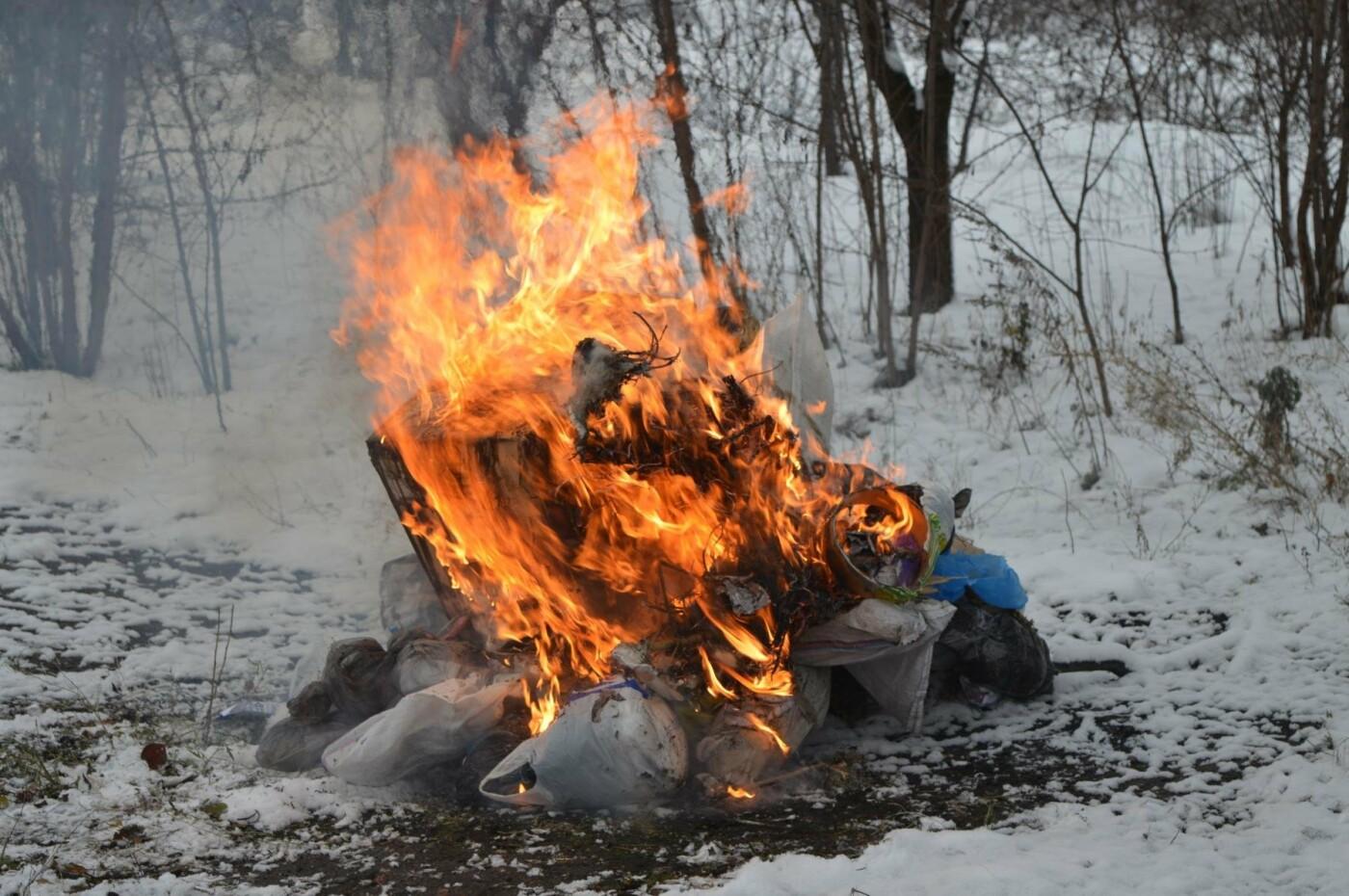 Краматорские правоохранители уничтожили около 7 килограммов наркотических веществ, фото-1