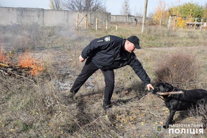В Славянском районе появится кинологический центр полиции, фото-1