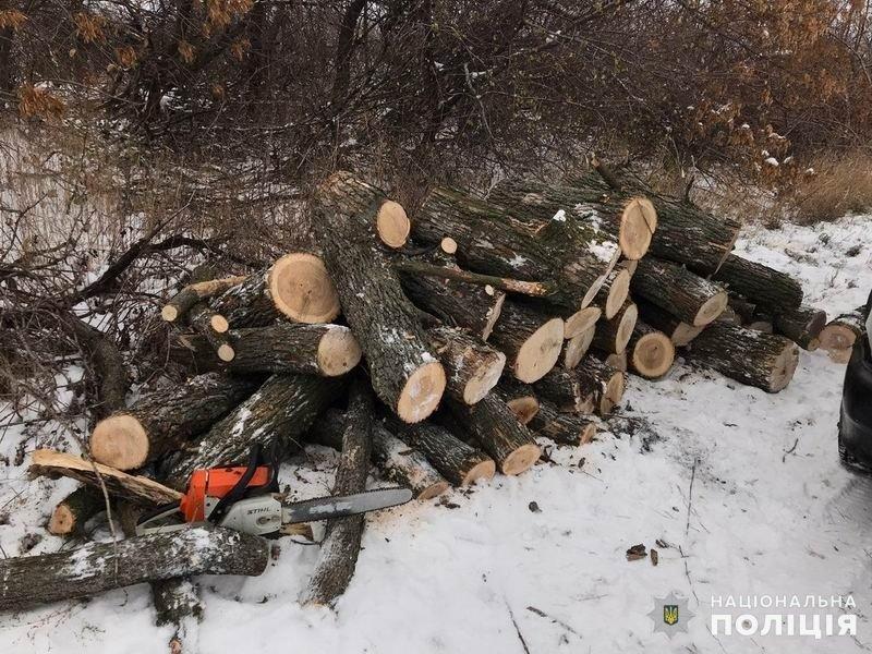 За выходные в Славянском районе краматорчане дважды незаконно вырубывали лес , фото-1