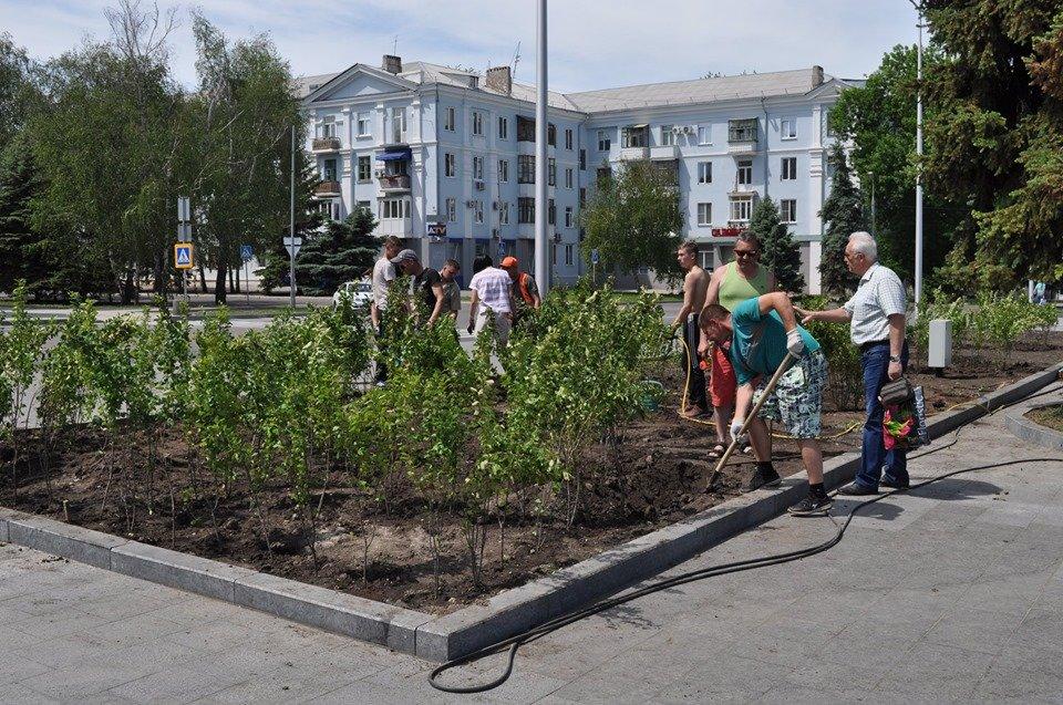 В Краматорске озеленяют площадь Мира, фото-1