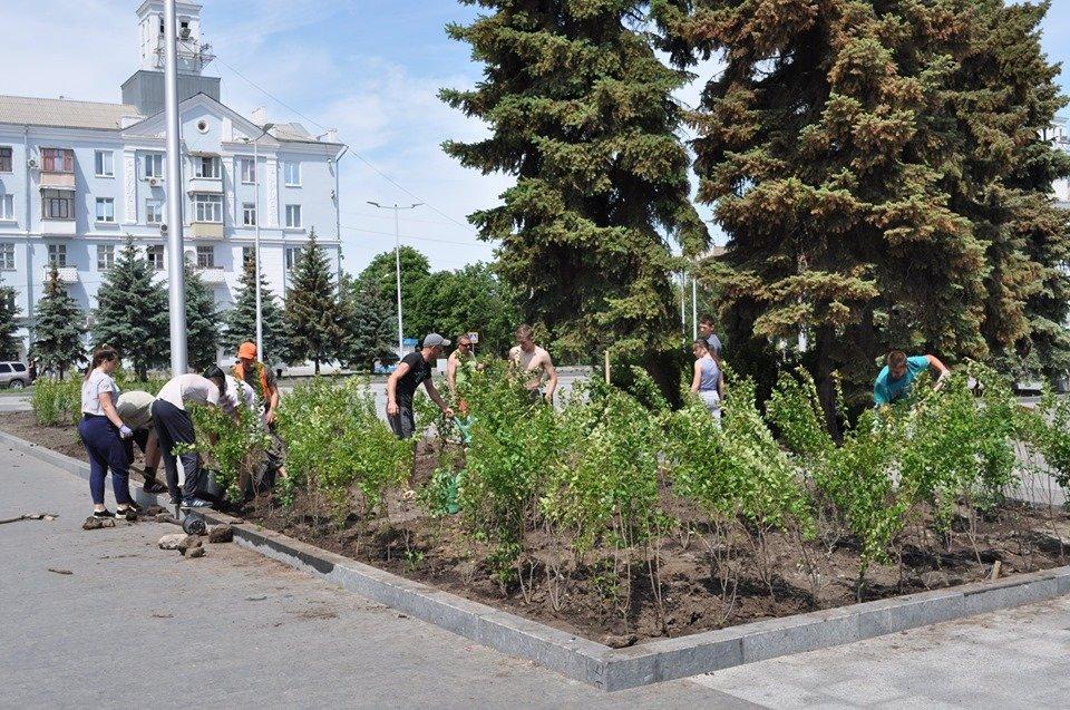 В Краматорске озеленяют площадь Мира, фото-3