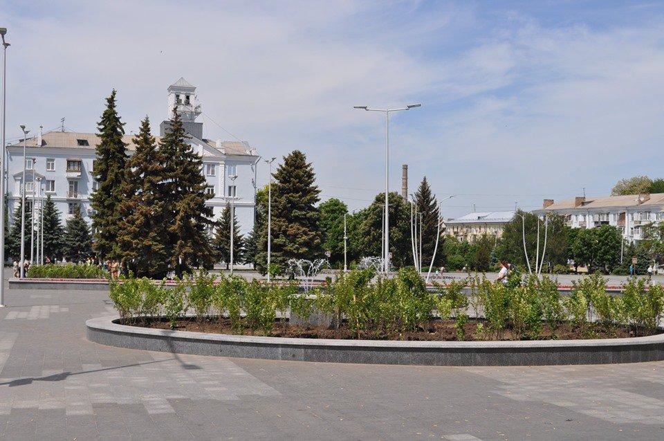 В Краматорске озеленяют площадь Мира, фото-2